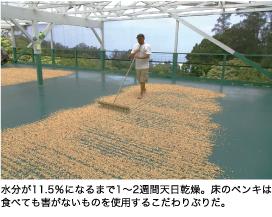水分が11.5%になるまで1~2週間天日乾燥。床のペンキは食べても害がないものを使用するこだわりぶりだ。