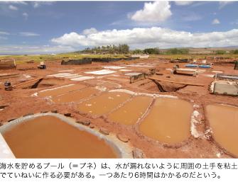海水を貯めるプール(=プネ)は、水が漏れないように周囲の土手を粘土でていねいに作る必要がある。一つあたり6時間はかかるのだという。