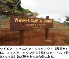ワイメア・キャニオン・ルックアウト(展望台)は、ワイメア・タウンから15キロメートル(約9.4マイル)ほど坂を上った右側にある。