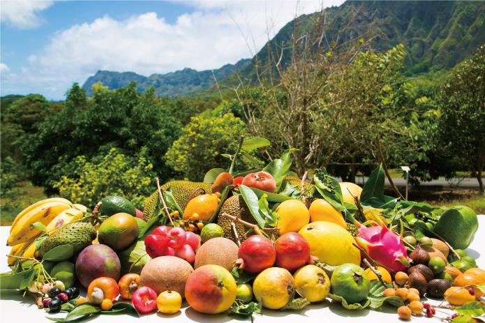 fruits tour