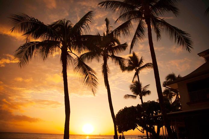 ホテルビーチバー総力取材 Vol.2「ハウス・ウィズアウト・ア・キー」@ハレクラニ