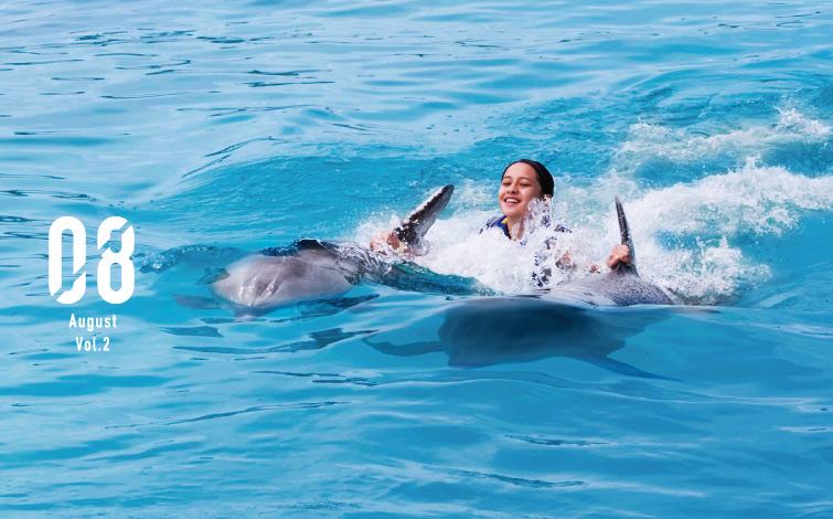 """世界でたった一頭のイルカとクジラのハーフ、<br />""""ウォルフィン""""と一緒に泳ごう!"""