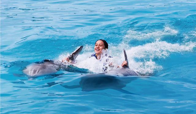 """世界でたった一頭のイルカとクジラのハーフ、""""ウォルフィン""""と一緒に泳ごう!"""