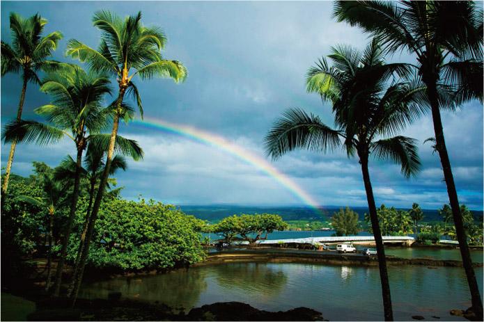 ハワイアンレインボー