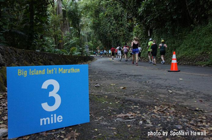 ビッグアイランド インターナショナルマラソン