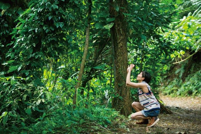 次のハワイは山ガールになる!緑を感じるマノアの滝へ