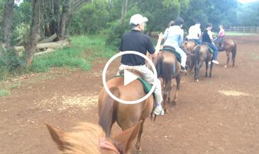ハワイで乗馬がしたくなったら!