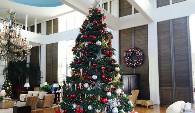 【ロコナビ!】あのラグジュアリーホテルの今年のクリスマスツリー