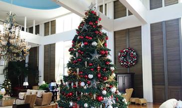 【ロコナビ!】あのラグジュアリーホテルの<br />今年のクリスマスツリーはこんな感じ!