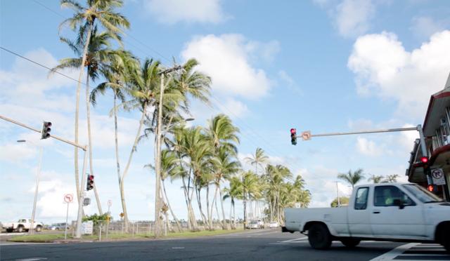 ブルータス編集部がハワイ島ヒロ周辺を街歩き。また行きたい5軒って?