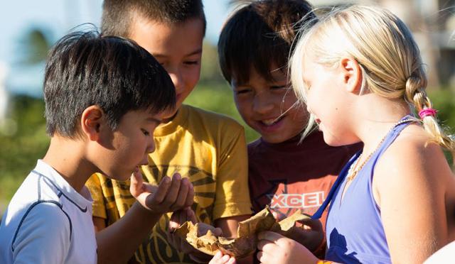 今年はファミリーでヒルトンのサマーキャンプでプチ留学体験!ハワイの自然や歴史を遊んで学ぼう!